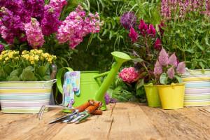 Organizza il giardino e i terrazzi con il feng shui